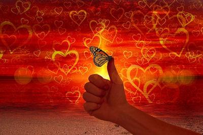 Trowaves vlinder